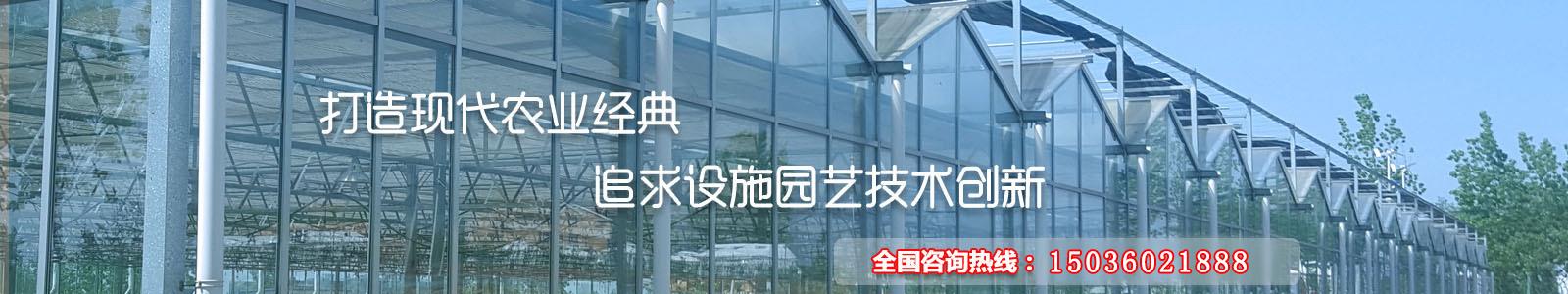 河南温室公司