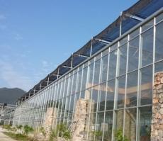 建造温室大棚应注意的问题