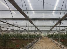 温室种植大棚为便于通风大棚顶膜与裙膜必须分