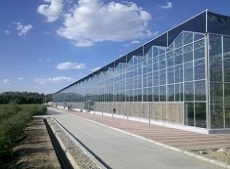 温室大棚--未来农业发展的主力军