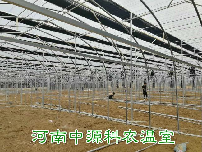 食用菌温室大棚公司