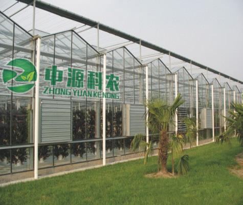辽宁沈阳连栋玻璃智能温室大棚