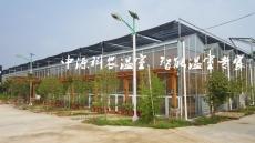 生态餐厅设计建造
