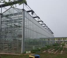 连栋玻璃智能温室