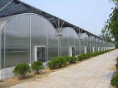 充气膜温室公司
