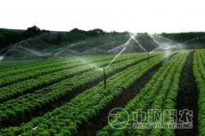 水肥一体化专业技术公司