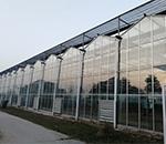 玻璃智能温室哪家好