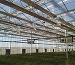 玻璃智能温室怎么样