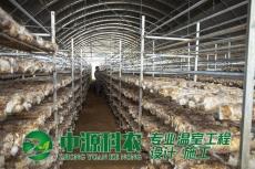 湖北恩施食用菌温室大棚公司